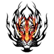 骑虎精品-手机软件下载