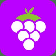 紫葡萄宝盒