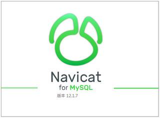 Navicat for MySQL x64 12.1.20
