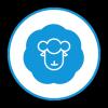 全民羊毛党APP v1.0