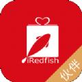 红礼鱼伙伴
