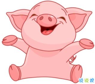 阳光养猪场v2020