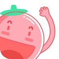 番茄英语app安卓版