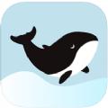 鲸心APP v1.0