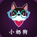 小奶狗定制APP手机版v1.1.15安卓客户端