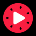 西瓜视频免费版