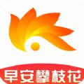 早安攀枝花APP下载v1.0招聘官网