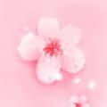 桃花直播女神coco