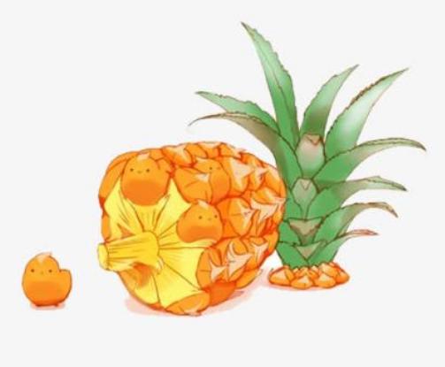 菠萝蜜钱贷款APP官方安卓版下载