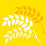 大麦影视安卓最新版下载 v4.5.38