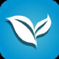 叶子视频TV手机版下载  v1.0.0