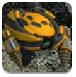 钻地机器人2中文版-冒险小游戏