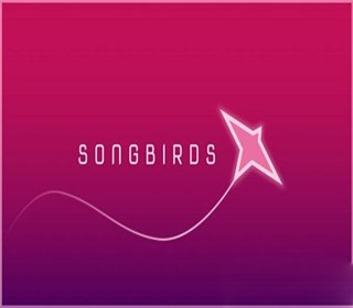 在《Songbirds》中以鸟群演奏空灵音符!