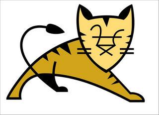 tomcat下载 v3.5 专业版