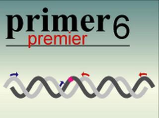 primerpremier6.0 专业版