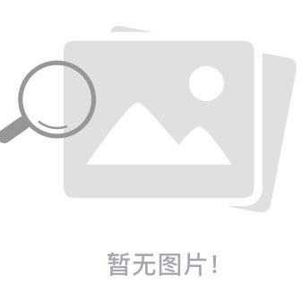 苏苏域名备案批量查询器下载 v1.0 绿色免费版