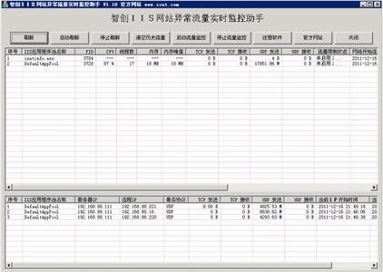 IIS网站异常流量实时监控助手 1.20