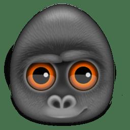 Debookee for Mac 6.2.0 免注册版