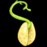 木子种子搜索器 7.0.11 免费版