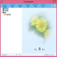 黑马远程控制 9.5 简体中文版
