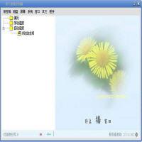 惊天远程控制器 8.8 简体中文版