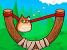 愤怒猫咪无敌版-益智小游戏