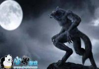 《狼人杀》6人明牌局的规则介绍 逻辑控的福音
