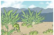 旅行青蛙全部道具中文翻译/道具用法 旅行青蛙道具有什么用