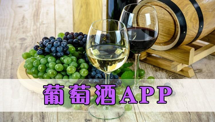 葡萄酒app-