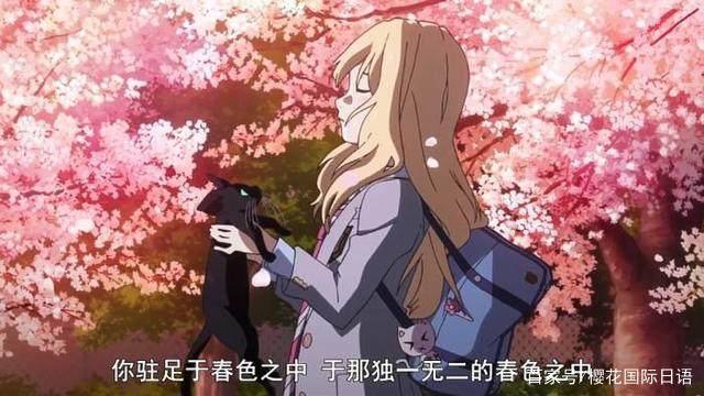 樱花动漫-应用合集
