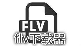flv下载器